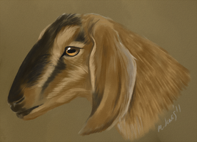 Goat speedpaint by neon-possum