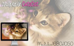 Wallpaper CuteCat by jessy-izan