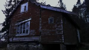 Abandoned house in the woods by Rho-Mu-31