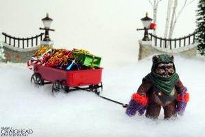 Wicket's Wagon by mlcraighead