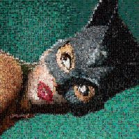 Catwoman Photomosaic by Enieledam108