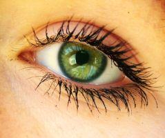 Green Eyes by 2cool2care