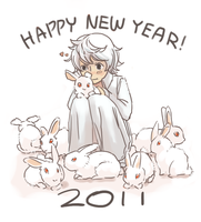 Happy New Years - 2011 by cloverinblue