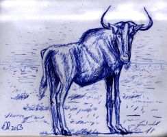Gnu by philippeL