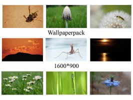 Wallpaperpack by aradilon