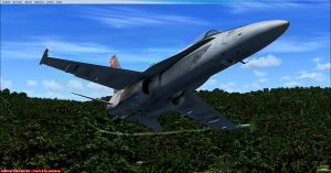 F-18 Swoop by TopARO