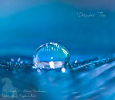 Dreamer's Tear by Gryphonia
