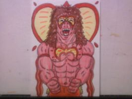 WWE SUPERSTAR THE ULTIMATE WARRIOR by shawncomicart