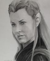 Tauriel - The Hobbit: The Desolation of Smaug by X-TeO-X