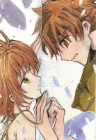 The barrier between us by Clamp-fanclub