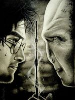 Harry Potter and Voldemort by Mannaz11