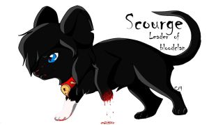 Scourge -Leader of bloodclan by xXMarijuanaXx
