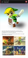 Young Link for Brawl by dragonnjmb