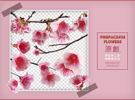 PngPack #26 flowers by ahui1107 by ahui1107