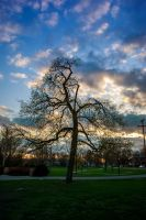 Fort Wayne Spring Sunset I by redwolf518