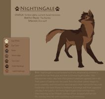 Nightingale ref by DawnFrost