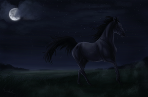 .:Under the moonlight:. by onlysan