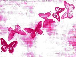 Butterflies by laurier-rose