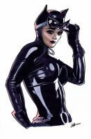 Catwoman sketch by artofmadness