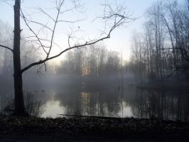 February Pond Fog by mrcbax