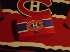 Canadiens Nintendo DS by Gie37