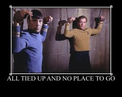 Demotivational Poster Spirk by slashygirl
