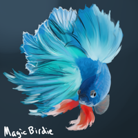 Betta speedpaint by MagicBirdie