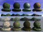 Organic Rock Pack By Someole3D by someole3d