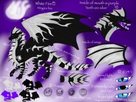 Megadragon Reference Sheet 2014 by ShardianofWhiteFire