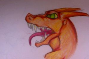 Charizard by golden-tigris