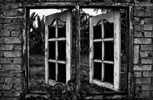 windows by BASSELMAZZAZ