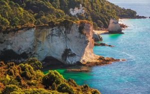 Colorful Coromandel by Mashuto