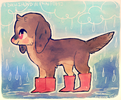 A dachshund in rain boots by foxtribe