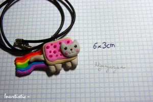 Nyancat Fimo Necklace by inu-chan-free