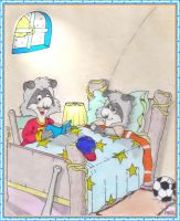 The  Raccoons:A  bedtime story by fredvegerano