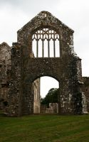 Lamphey Bishops Palace 8 GothicBohemianStock by GothicBohemianStock