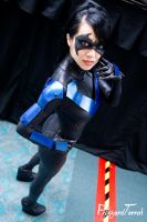 SDCC14 - Nightwing by BlizzardTerrak