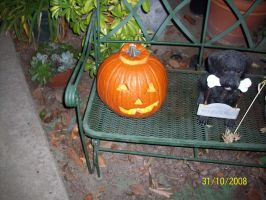 Haunt: Real Jack-o-Latern by foxanime101