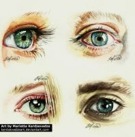 Eye watercolor by KerdzevadzeART