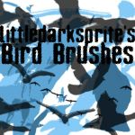 Littledarksprite Bird Brushes by littledarksprite