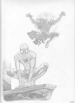 Spidey....Look Out by tmcvern