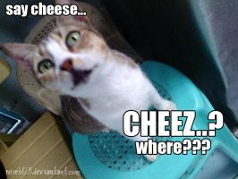 Where's the Cheez? by nixeh03