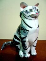 American Shorthair Papercraft by Vargaskyld