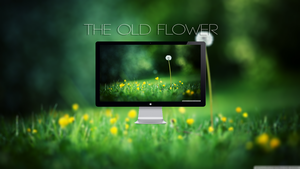 The Old Flower by roisol