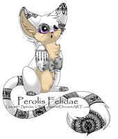 Lace Adoptable :CLOSED: by Sesshomaru-XD-13