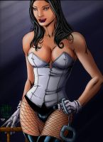 Zatanna_colors02 by Troianocomics