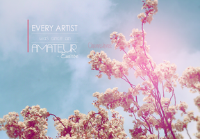 Every artist was once an amateur. by Channshinee