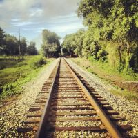Railroad Tracks by shelbyrenee