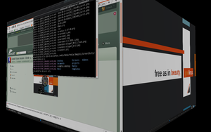 Compiz Fusion Session -- Cube by rebound11