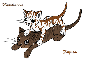 Trade - Hawkmoon and Foxpaw by WildpathOfShadowClan